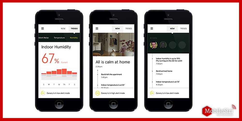 Canary security system app
